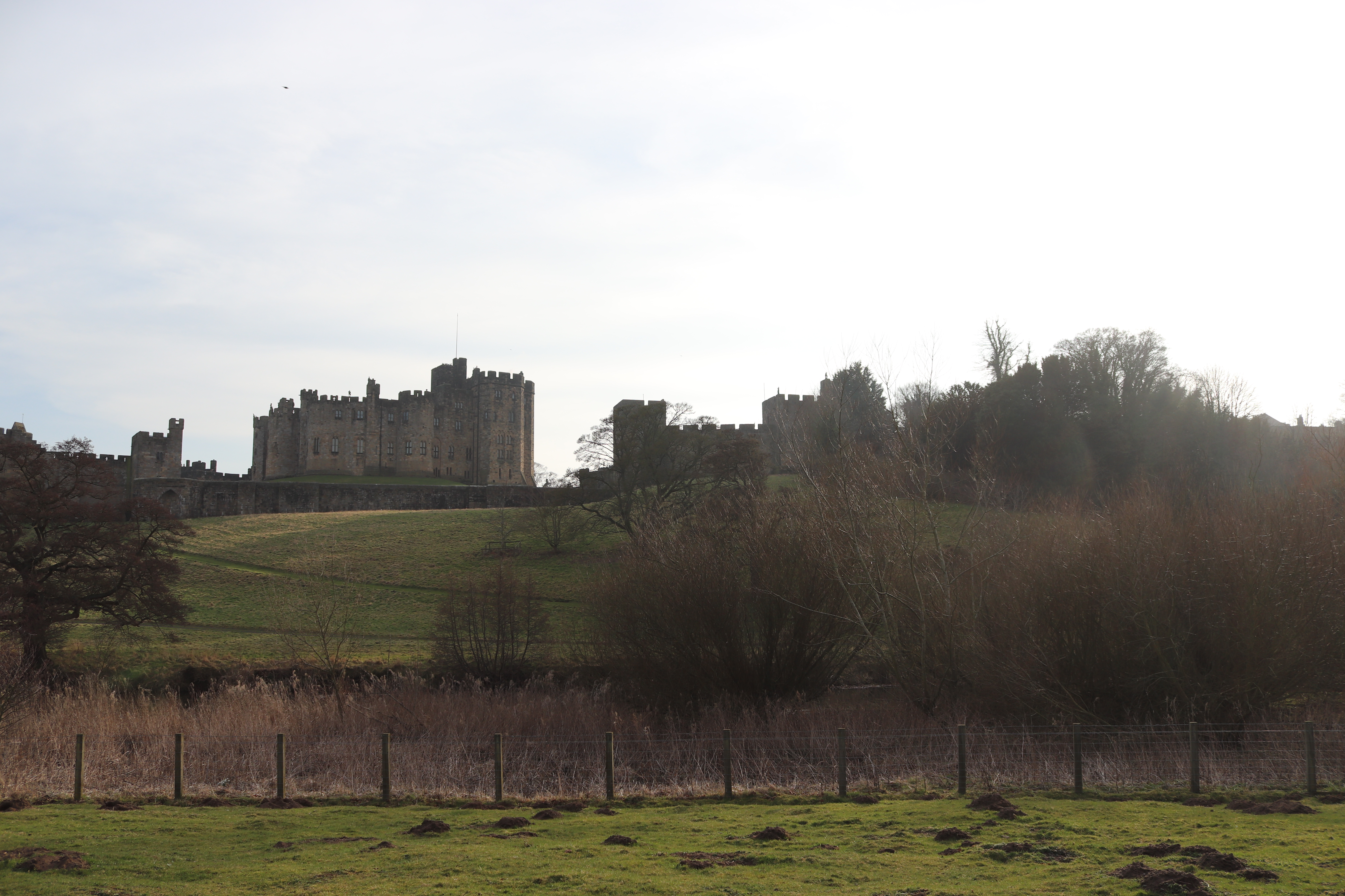 Hogwarts, Lindisfarne and being a vegan in Northumberland!
